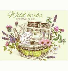 Herbal cosmetics basket vector