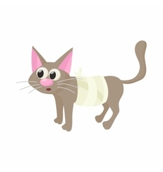 Cat with an injury icon cartoon style vector image vector image