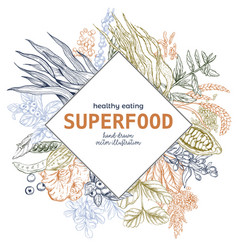 superfood rhombus banner color vector image