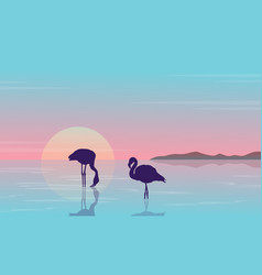 Collection stock flamingo silhouette beauty vector