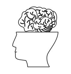 human head brain think outline vector image
