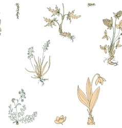 seamless pattern with wild plants vector image vector image