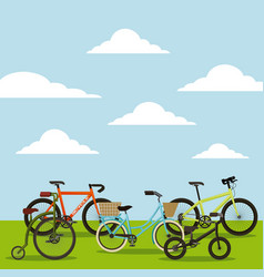 Set of the different bicycles in the landscape vector