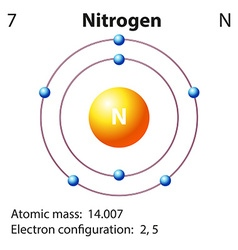 Diagram representation of the element nitrogen vector