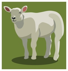 Animal sheep on green vector image