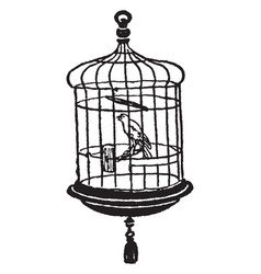 Canary in cage vintage vector