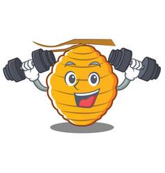 Fitness bee hive character cartoon vector