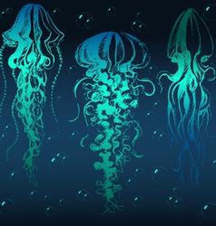 Jellyfish01 vector