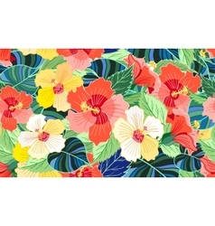 tropical colorful hibiscus vector image