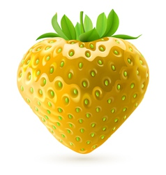 Yellow strawberry vector
