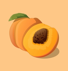 Peach with leaf vector