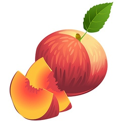 Icon of Ripe summer peach with two slices and vector image