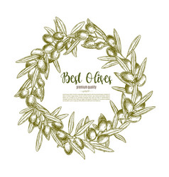 Poster olives branch wreath for olive oil vector