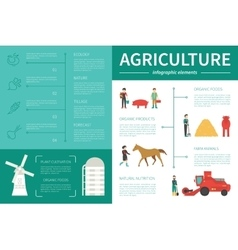 Agriculture infographic flat vector