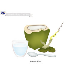 Coconut water drink vector