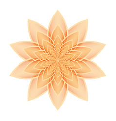 Lotus flower orange vector