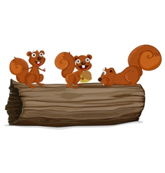 Squirrels on a log vector image vector image