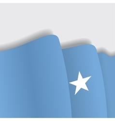 Somalian waving flag vector