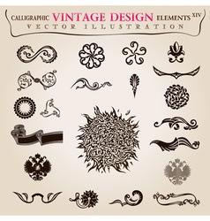 Calligraphic elements vintage vector image vector image