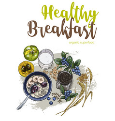 healthy breakfast full color sketch vector image