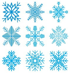 Nine original snow-flakes vector