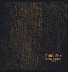 denim supply jeans vector image