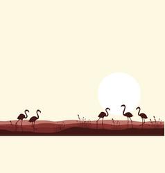 Flamingo scene silhouettes vector