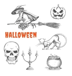 Halloween decoration symbols in pencil sketch vector image