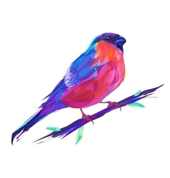 The cute red bullfinch exotic bird vector