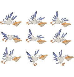 A set of pelicans storyboards vector