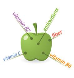 Apple content properties and benefits vector