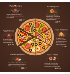 Round pizza with different sort slices and vector