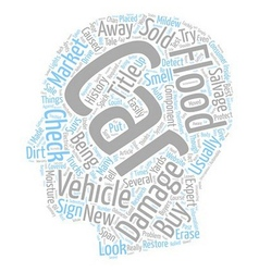 Do not buy flood damaged cars text background vector