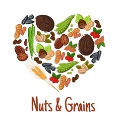 Nut grain seed and bean heart poster design vector