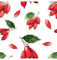 Seamless pattern with fruits of dogwood vector