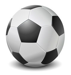 Detailed black fringe football ball vector