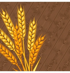Background with ears of wheat vector image vector image