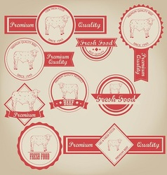 Beef vintage label vector