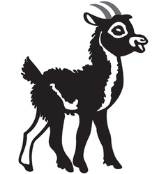 Little black goat vector image