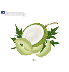 Native fruit in marshall islands vector