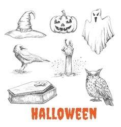 Sketched elements of halloween celebration vector