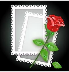White frame and rose vector