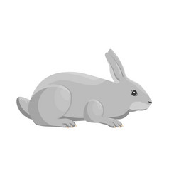 a rabbit vector image