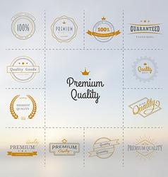 Premium quality labels set vector