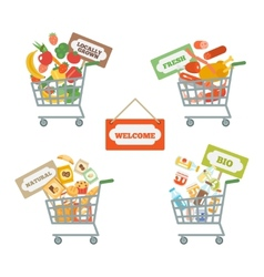 Supermarket cart with food vector