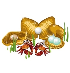 Three gold shells with pearls and crabs vector