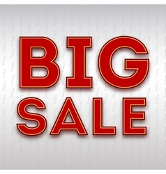 Poster with the inscription Big sale vector image vector image