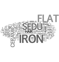 What makes the sedu flat iron so special text vector