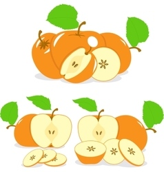 Orange color apples slices collection of vector