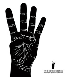 Numbers hand signs set number four detailed black vector